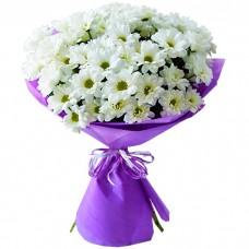 Зеленогорск красноярск 45 доставка цветов какой сделать подарок девушке на 14 февраля